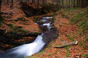 Podzimní Satina II