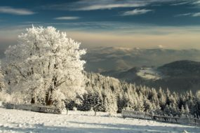 V zemi Mrazíka