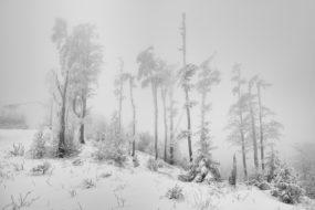 V mlhách pod Lysou horou