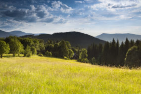 Rozcestí Butořanka (735 m n. m.)
