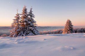 Zimní probouzení